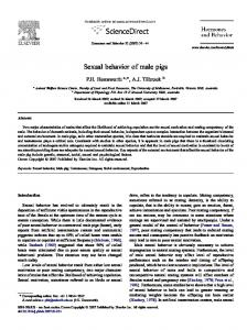 Sexual behavior of male pigs