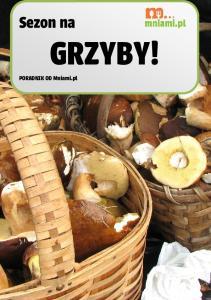 Sezon na GRZYBY! PORADNIK OD Mniami.pl