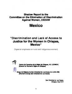 Shadow Report to the Committee on the Elimination of Discrimination Against Women, CEDAW. Mexico