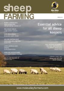 sheep FARMING In this issue  ROBERT JORDAN (NSA) SHEEP REVIEW AND OPPORTUNITIES COMING UP
