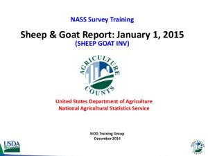 Sheep & Goat Report: January 1, 2015