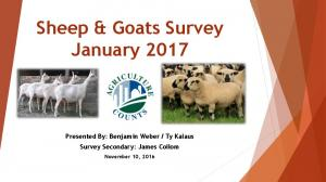 Sheep & Goats Survey January 2017