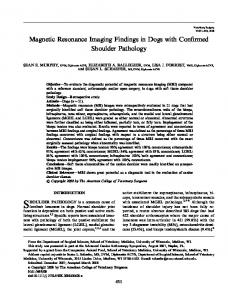 SHOULDER PATHOLOGY is a common cause of. Magnetic Resonance Imaging Findings in Dogs with Confirmed Shoulder Pathology