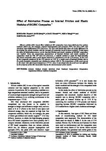 SiC Composites