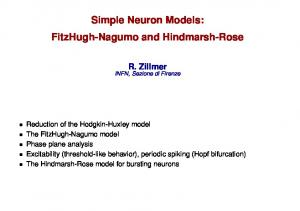 Simple Neuron Models: FitzHugh-Nagumo and Hindmarsh-Rose