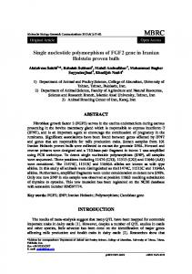 Single nucleotide polymorphism of FGF2 gene in Iranian Holstein proven bulls ABSTRACT