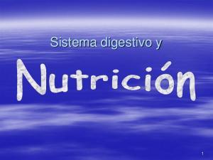 Sistema digestivo y 1
