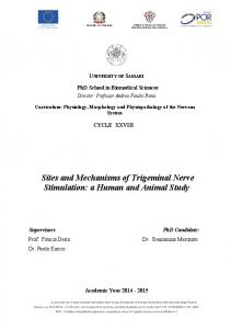 Sites and Mechanisms of Trigeminal Nerve Stimulation: a Human and Animal Study