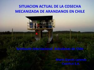 SITUACION ACTUAL DE LA COSECHA MECANIZADA DE ARANDANOS EN CHILE