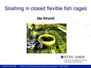 Sloshing in closed flexible fish cages