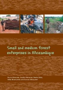 Small and medium forest enterprises in Mozambique