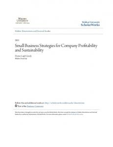 Small Business Strategies for Company Profitability and Sustainability