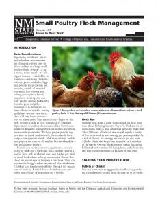Small Poultry Flock Management
