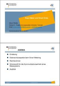 Smart Meter und Smart Grids