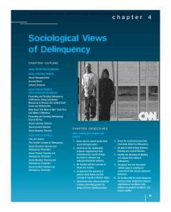 Sociological Views of Delinquency
