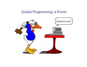 Socket Programming: a Primer. Socket to me!