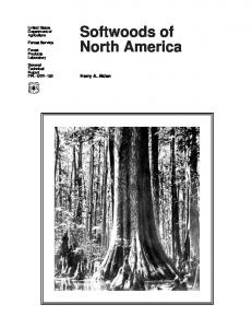 Softwoods of North America