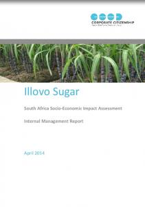 South Africa Socio-Economic Impact Assessment Internal Management Report