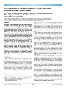 SOX4 Expression in Bladder Carcinoma: Clinical Aspects and In vitro Functional Characterization