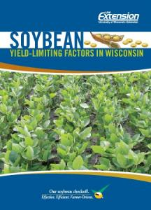 Soybean. Yield-Limiting Factors in Wisconsin