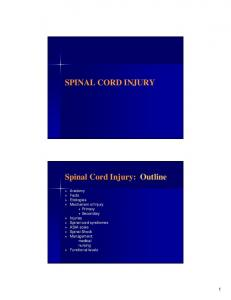 SPINAL CORD INJURY Spinal Cord Injury: Outline