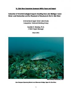 St. Clair River Ecosystem Summary White Paper and Report