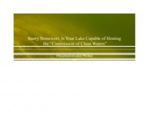 Starry Stonewort: Is Your Lake Capable of Hosting the Connoisseur of Clean Waters
