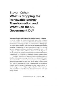 Steven Cohen What Is Stopping the Renewable Energy Transformation and What Can the US Government Do?