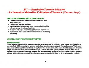 STI Sustainable Turmeric Initiative: An Innovative Method for Cultivation of Turmeric (Curcuma longa)