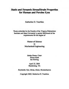 Strain Properties for Human and Porcine Eyes