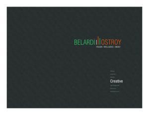Strategy. Acquisition. Retention. Creative. Data Management. ecommerce. belardiostroy.com
