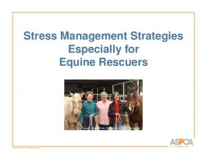 Stress Management Strategies Especially for Equine Rescuers