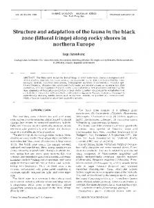 Structure and adaptation of the fauna in the black zone (littoral fringe) along rocky shores in northern Europe