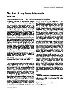 Structure of Long Bones in Mammals