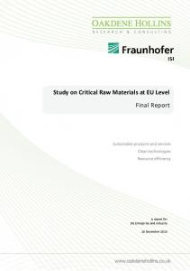 Study on Critical Raw Materials at EU Level. Final Report. A report for DG Enterprise and Industry