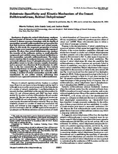 Substrate Specificity and Kinetic Mechanism of the Insect Sulfotransferase, Retinol Dehydratase*