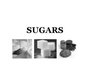 Sugar Cane. SUGAR-CANE (Saccharum officinarum)