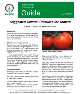 Suggested Cultural Practices for Tomato