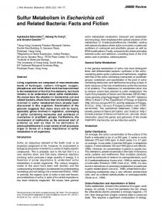 Sulfur Metabolism in Escherichia coli and Related Bacteria: Facts and Fiction