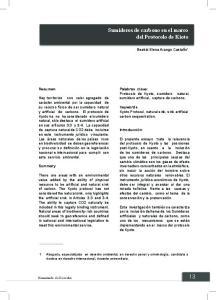Sumideros de carbono en el marco del Protocolo de Kioto