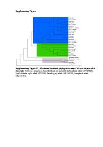 Supplementary Figures