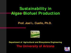 Sustainability in Algae Biofuel Production