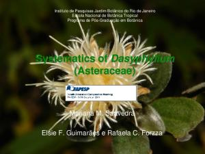 Systematics of Dasyphyllum (Asteraceae)