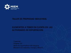 TALLER DE PROPIEDAD INDUSTRIAL ELEMENTOS A TENER EN CUENTA EN LAS ACTIVIDADES DE EXPORTACION