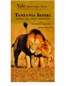 TANZANIA SAFARI DURING THE GREAT MIGRATION