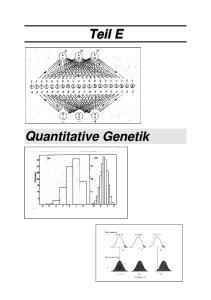 Teil E: Quantitative Genetik