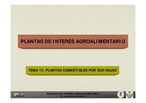 TEMA 12. PLANTAS COMESTIBLES POR SUS HOJAS