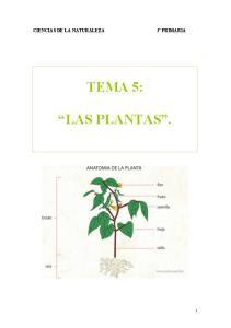 TEMA 5: LAS PLANTAS