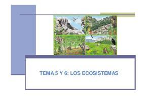 TEMA 5 Y 6: LOS ECOSISTEMAS