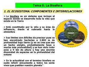 Tema 6. La Biosfera 1. EL ECOSISTEMA: COMPONENTES E INTERRELACIONES
